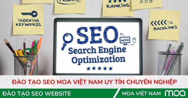 Đào tạo SEO uy tín chuyên nghiệp tại MOA Việt Nam